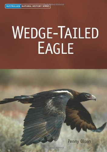 9780643091658: Wedge-tailed Eagle (Australian Natural History Series)