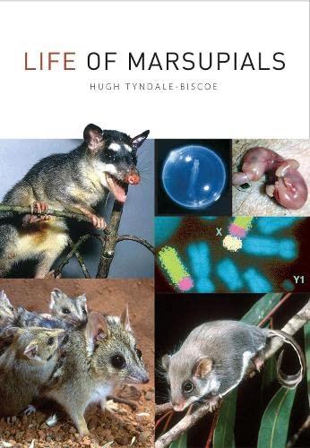 9780643091993: Life of Marsupials