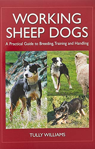 9780643093430: Working Sheep Dogs: A Practical Guide to Breeding, Training and Handling