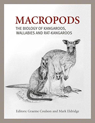 9780643096622: Macropods: The Biology of Kangaroos, Wallabies and Rat-Kangaroos