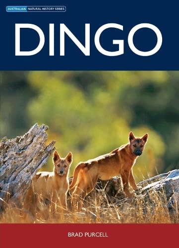 9780643096936: Dingo (Natural History)