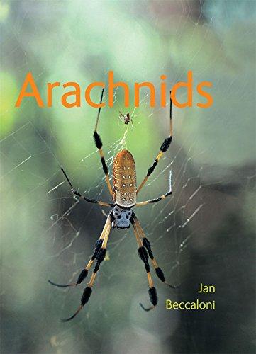 9780643096974: Arachnids