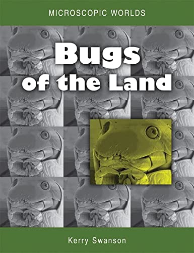 9780643103894: Microscopic Worlds: Bugs of the Land