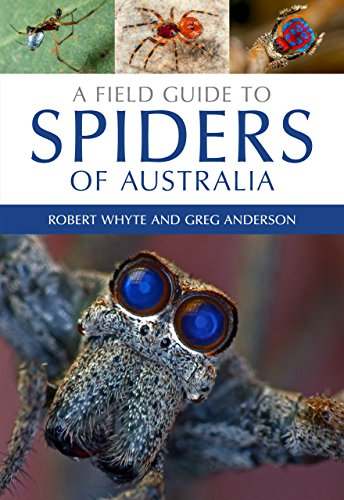 A Field Guide to Spiders of Australia (Paperback)