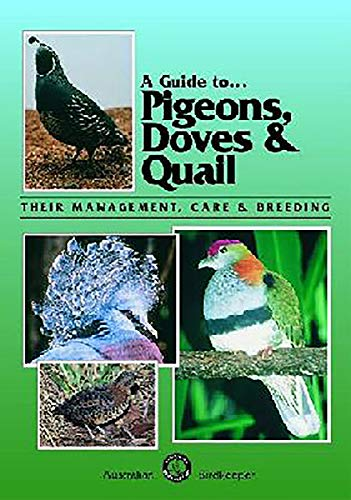 A Guide to Pigeons, Doves and Quail (Paperback): Danny Brown