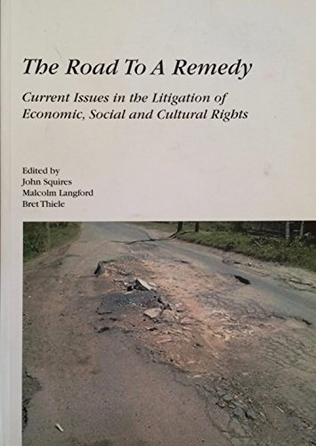 9780646455389: The Road to a Remedy : Current Issues in the Litigation of Economic, Social, and Cultural Rights
