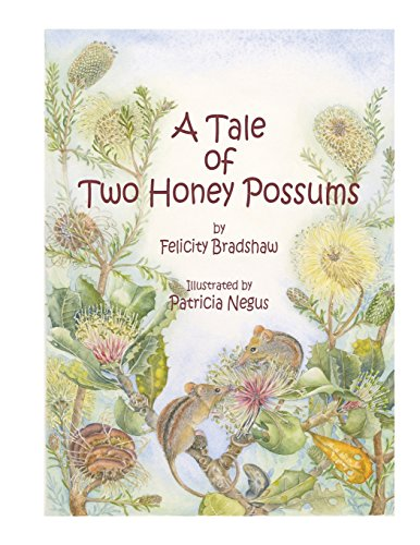 9780646502465: A Tale of Two Honey Possums