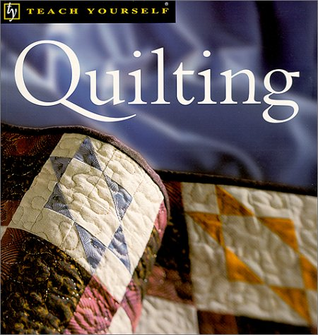 9780658004940: Teach Yourself Quilting