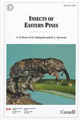 9780660177205: Insects of Eastern Pines (Miscellaneous Report/Geological Survey of Canada)