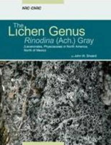 The Lichen Genus Rinodina (lecanoromycetidae, Physciaceae) in North America, North of Mexico (...