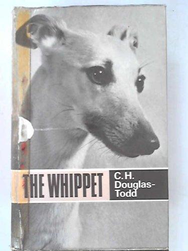 9780668009485: Whippet