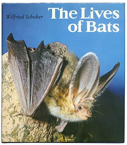 The Lives of Bats: Schober, Wilfried