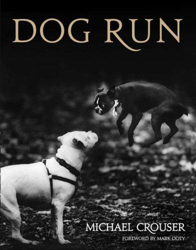 9780670020379: Dog Run