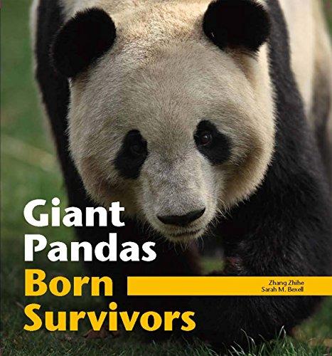 9780670080946: Giant Pandas: Born Survivors