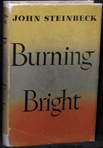 9780670196166: Burning Bright