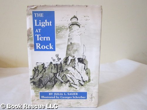9780670428359: Light at Tern Rock