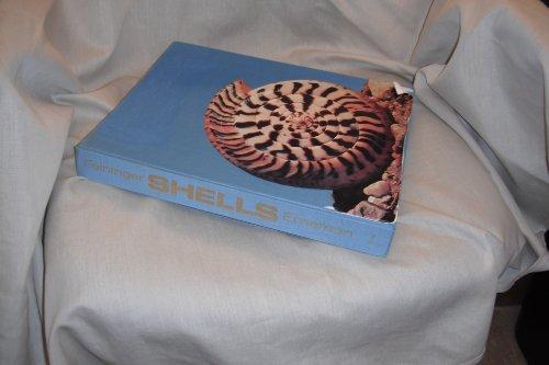 9780670639632: Shells (A Studio book)