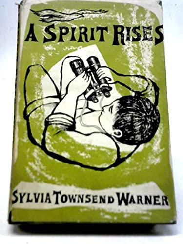 9780670663279: A Spirit Rises