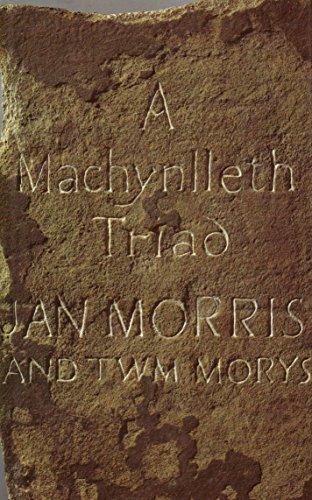 9780670854790: A Machynlleth Triad
