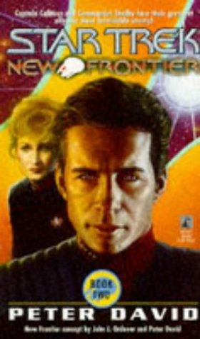 9780671013967: Into the Void (Star Trek New Frontier, No 2)