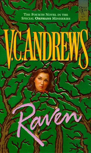 9780671020316: Raven (Orphans)