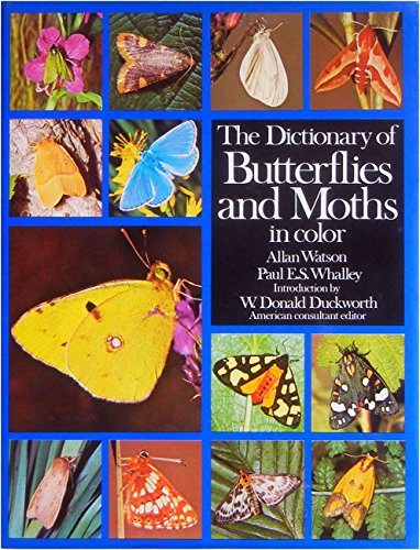 9780671061418: The Dictionary of Butterflies and Moths in Color