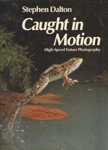Caught in Motion: High-Speed Nature Photography by Dalton, Stephen: Stephen Dalton