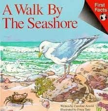 9780671686628: A Walk by the Seashore (First Facts Series)