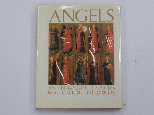 9780671706500: Angels : An Endangered Species