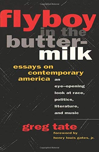 Flyboy in the Buttermilk: Essays on Contemporary America: Tate, Greg