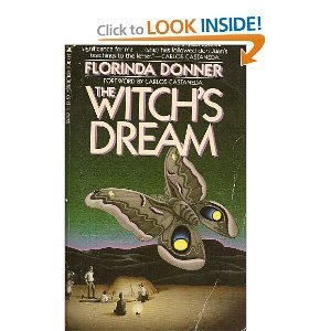 9780671729950: The Witch's Dream