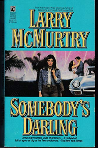 9780671745851: Somebody's Darling : A Novel