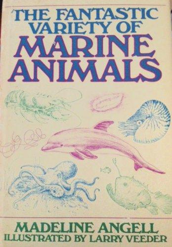 The Fantastic Variety of Marine Animals: Madeline Angell