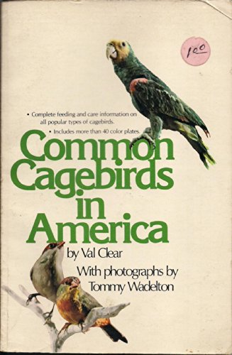 COMMON CAGEBIRDS IN AMERICA