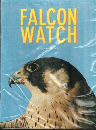 9780673625106: Falcon watch