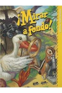 9780673649188: READING 2000 SPANISH LEVELED READER C GR.2 UNIT 2 (Lectura Scott Foresman: Yellow Level)