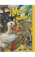 READING 2000 SPANISH LEVELED READER C GR.2: Scott Foresman