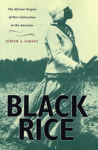9780674008342: Black Rice: The African Origins of Rice Cultivation in the Americas