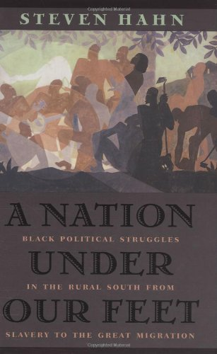 9780674011694: A Nation under Our Feet: Black Political Struggles in the Rural South from Slavery to the Great Migration