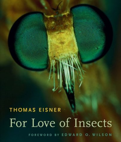9780674011816: For Love of Insects