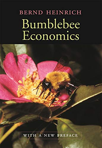 9780674016392: Bumblebee Economics: With a New Preface, Revised Edition