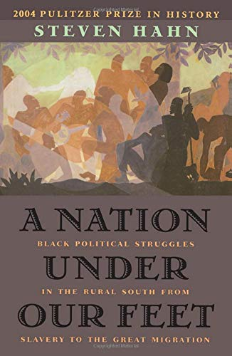 9780674017658: A Nation Under Our Feet: Black Political Struggles in the Rural South from Slavery to the Great Migration