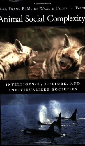 9780674018235: Animal Social Complexity: Intelligence, Culture, and Individualized Societies