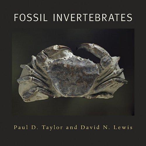 9780674019720: Fossil Invertebrates