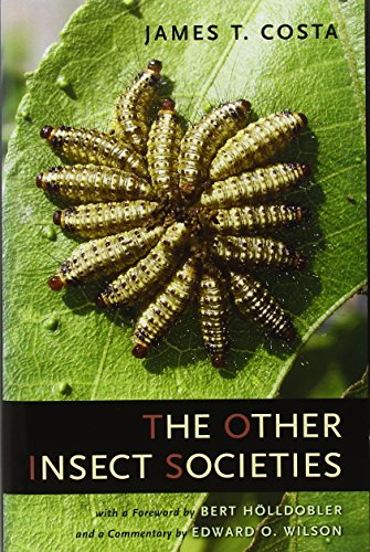 9780674021631: The Other Insect Societies