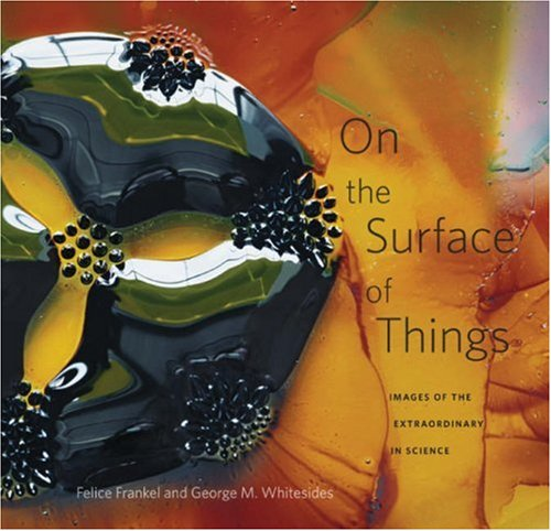 9780674026889: On the Surface of Things: Images of the Extraordinary in Science