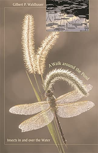 9780674027657: A Walk Around the Pond: Insects in and Over the Water