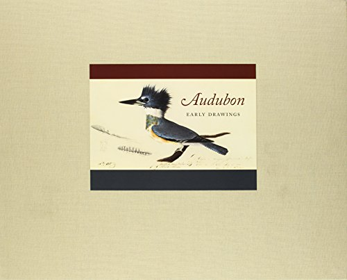 9780674031029: Audubon: Early Drawings