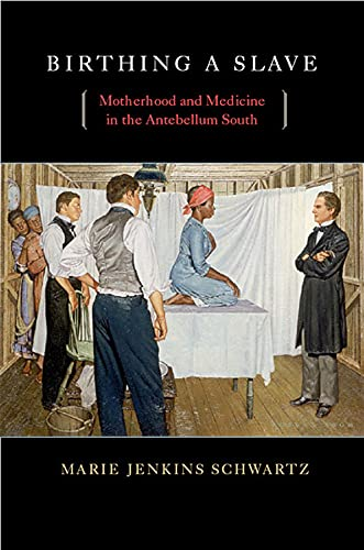 9780674034921: Birthing a Slave: Motherhood and Medicine in the Antebellum South