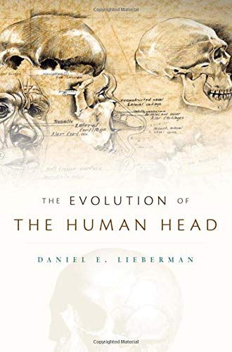 9780674046368: Evolution of the Human Head